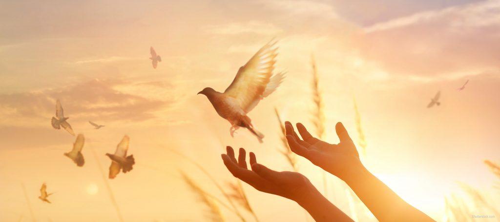 damai di bumi peace on earth religious tolerance religion